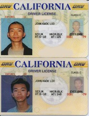 driver's license, identity document,