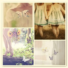 ~Butterfly...