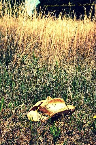 fields cowboyhat picnik denesiachristine