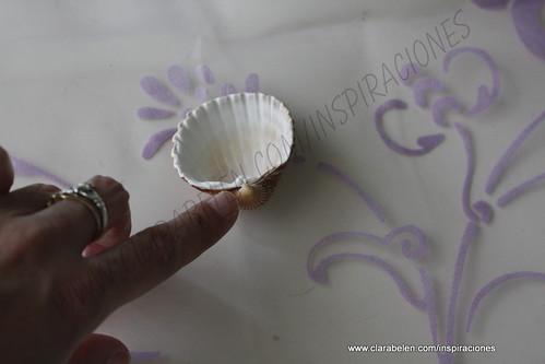 Inspiraciones manualidades y reciclaje c mo hacer un - Como hacer conchas finas ...