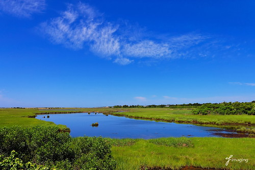Blues and greens of Nantucket