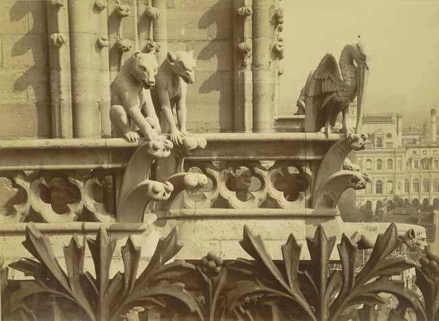 Notre Dame de Paris. Tower with Chimeras