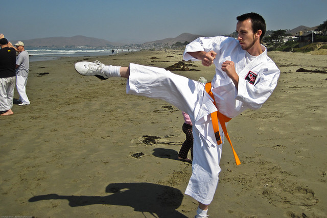 A karate enthusiast named Kyle (shown in costume), and two of his brown-belt buddies (shown in street clothes), demonstrated some kicking and Karate techniques.