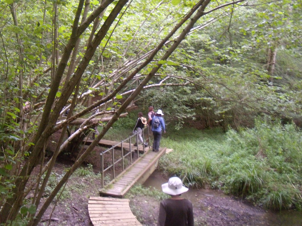 Over a boardwalk Cowden to Hever