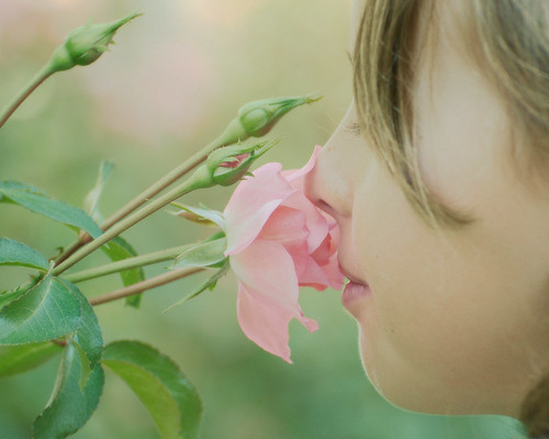 Don't Forget to Stop and Smell the Roses