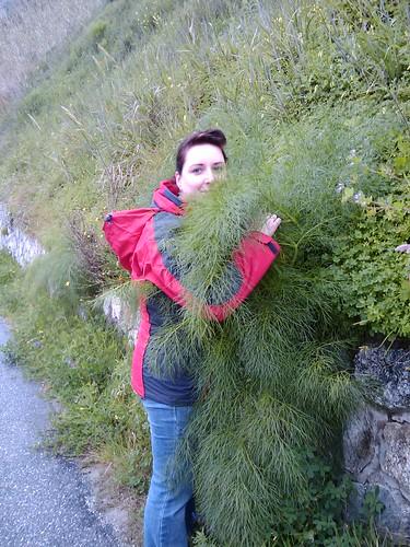 rose loves fennel :)