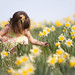 Picking Daffodils (Explored) by Wiltbank Photography