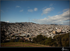Bernal Picks-0079
