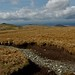 Small photo of Yr Arag from Foel Fras