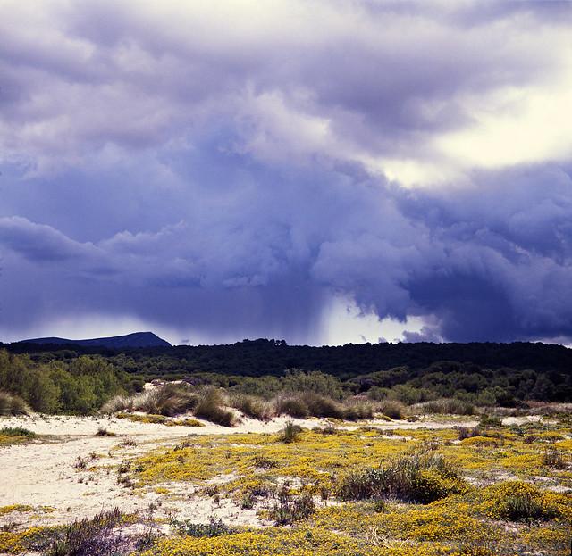 tormenta lejana