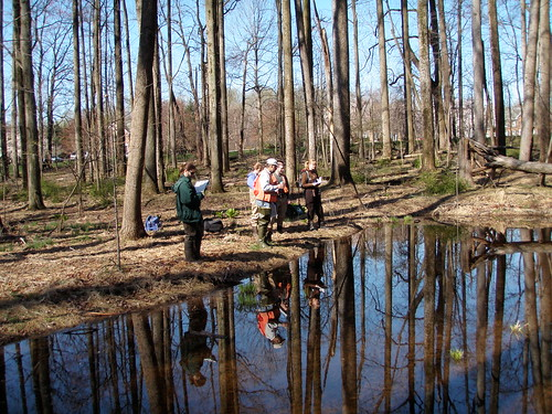 Image of DEP staff studying a stream.