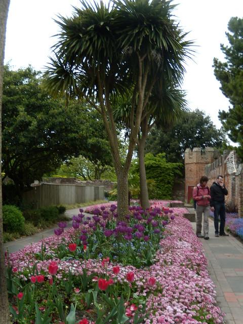 Bishops Garden, Chichester Cathedral