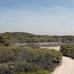 Watch Hill campground, Fire Island National Seashore
