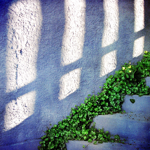 Windows of light on a blue wall