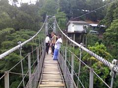 rolling stock(0.0), track(0.0), suspension bridge(1.0), transport(1.0), canopy walkway(1.0), rope bridge(1.0), bridge(1.0),