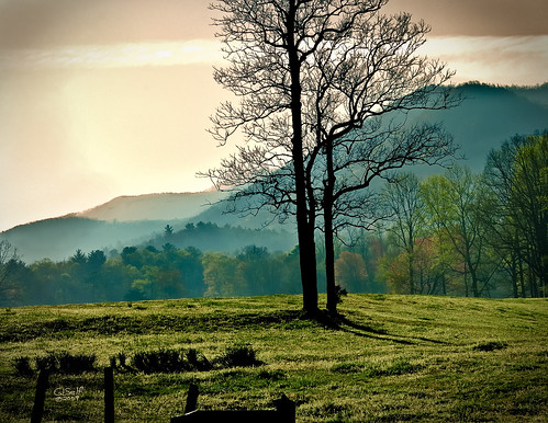 usa mountain beautiful sunrise dawn nationalpark spring tennessee d200 cadescove greatphoto greatsmokymountainnationalpark nikond200 beautifulshot nikoncapturenx abigfave 10millionphotos absolutelystunningscapes daarklands sailsevenseas sailsevenseasmaster 2008springgsmnp