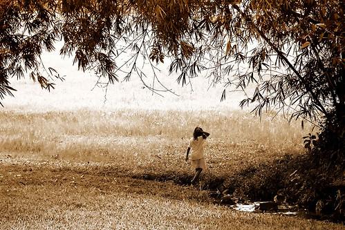 travel trees vacation tourism monochrome grass landscape blackwhite george kid tour child philippines tourist bamboo spots mateo filipinas pilipinas gregorio pinas destinations thehousekeeper georgemateo