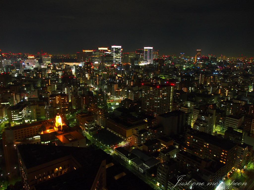 Vegan Tokyo at Night