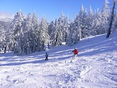 snowshoe(0.0), footwear(0.0), mountain range(0.0), resort(0.0), ski equipment(1.0), winter sport(1.0), mountain(1.0), winter(1.0), ski(1.0), skiing(1.0), piste(1.0), sports(1.0), snow(1.0), ski touring(1.0), ski mountaineering(1.0), cross-country skiing(1.0), telemark skiing(1.0), nordic skiing(1.0),
