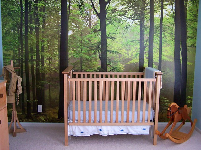 Enchanted forest bedroom flickr photo sharing for Enchanted forest bedroom wall mural