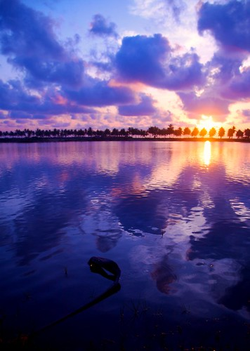 sunset sky cloud sun india reflection water sunrise canon landscape gorgeous magic dslr chennai 2009 platinumphoto diamondclassphotographer canoneos5dmarkii theperfectphotographer winnr canonefllens absolutelystunningscapes rubyphotographer goldenheartaward