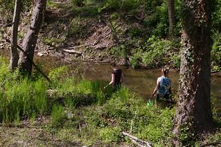 Gillies Creek 4.18.09 (8)