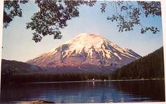 Vintage Postcard - Mount St. Helens and Spirit Lake, Washington