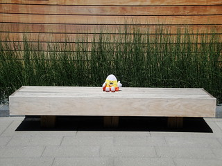 Mr Hug and Luv Alone on a Bench