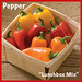 "Pepper ""Lunchbox Mix""  — Photo Courtesy Welby Gardens and Hardy Boy Plants"