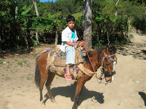republica geotagged dominicanrepublic dr dominicana saddle mule ciénaga geo:lat=19068025 geo:lon=70859542