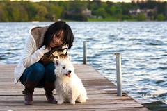 Westie on a dock