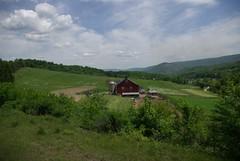 Helmstetters Farm