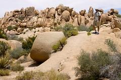 Joshua Tree National Park, 2009 - 074