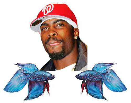 Michael vick fighting fish scandal notionscapital for Lost texas fishing license
