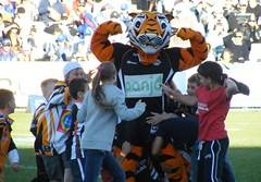 WESTS TIGERS MASCOT