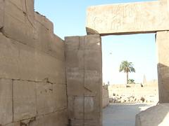 Egypt- (60)