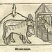 Aesop: 1501 illustrations (Mannheim)