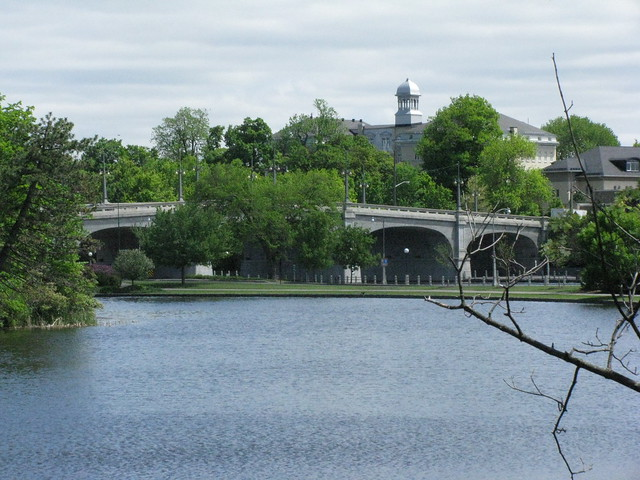 A photograph of the Bank Street Bridge in the Glebe