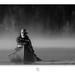 """© Dreams are Black & White ! """"Retrospective"""" by Renald Bourque"""