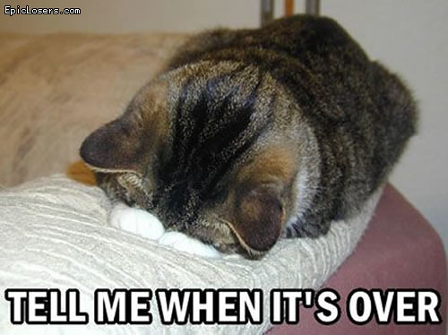 Tell me when it's over - LOLCats