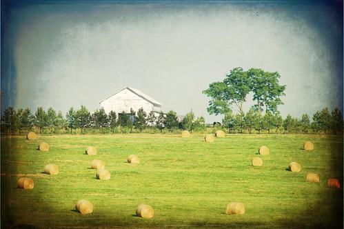 texture field barn farm southcarolina crescent hay grungeframe skeletalmess