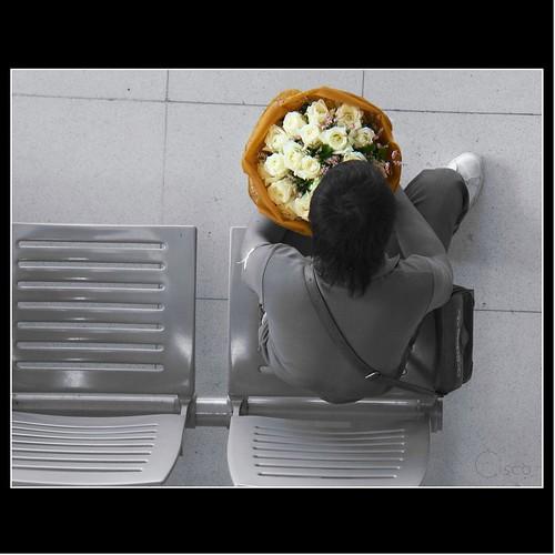 cutout bangkok cisco thailandia photographia blackwhitephotos infinestyle quelmazzolindifiori saariysqualitypictures magicunicornverybest magicunicornmasterpiece
