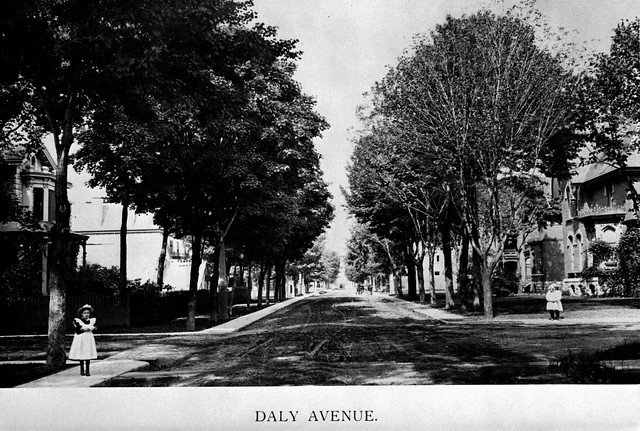A photograph of Daly Avenue in Sandy Hill, 1897