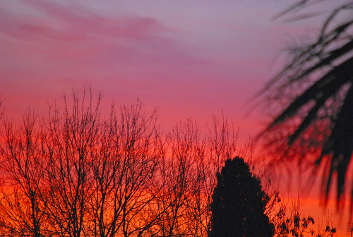 uk england sky clouds nikon surrey guildford d60 nikond60 colorphotoaward flickrestrellas artofimages