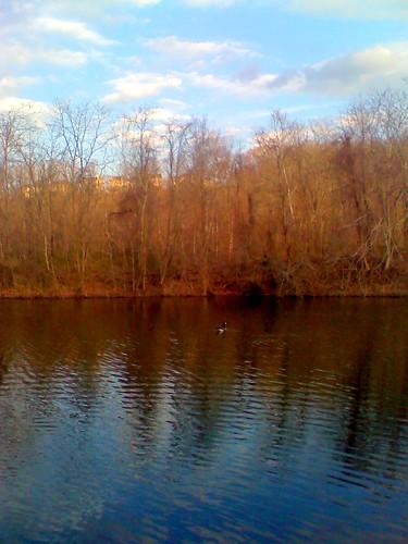 cameraphone trees sky water clouds pond outdoor atmosphere blackrocksanctuary