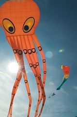 29th International Kite Festival /2
