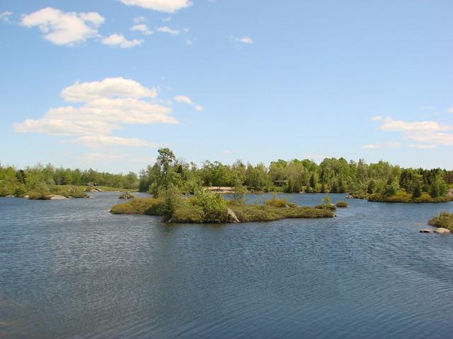 Rockwod Park Fisher Lake Dog Park