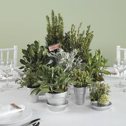DIY Centerpieces Herbs in Weddings