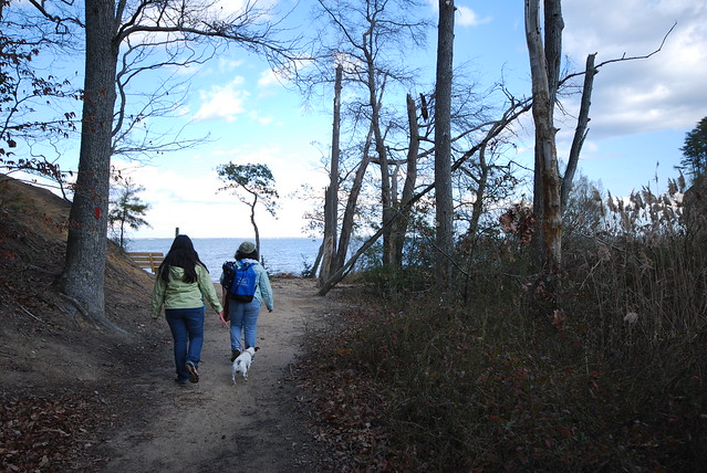 Westmoreland State Park Big Meadow Trail ends up at Fossil Beach!