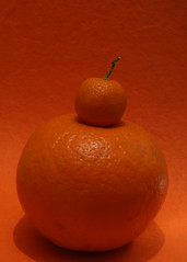 clementine, vegetable, citrus, orange, produce, fruit, food, still life photography, still life, tangerine, mandarin orange,